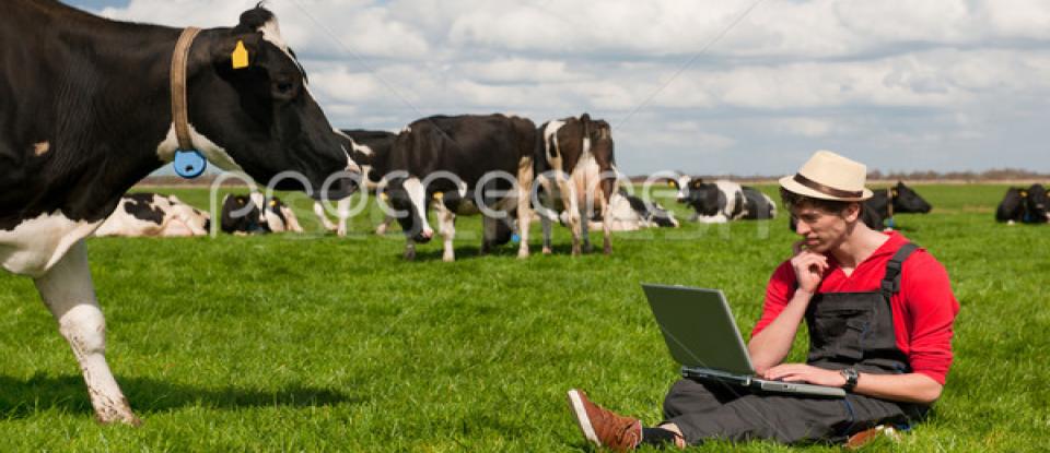 Como gerenciar uma fazenda