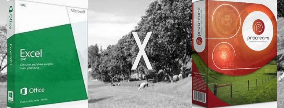Gestão de fazenda via Excel ou Software
