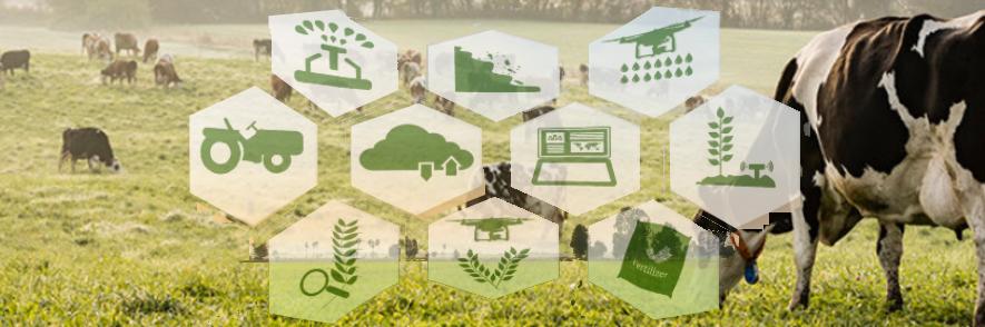 PECUÁRIA 4.0 inovações tecnológicas na produção pecuária